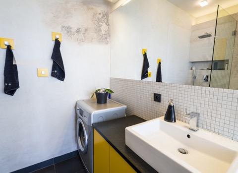 moisissure renovation maison