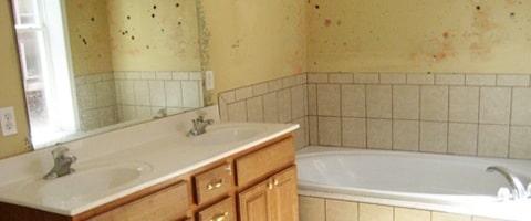 salle de bains humide