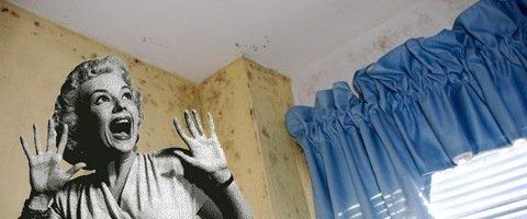 Problèmes d'humidité murs humides