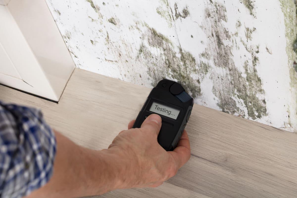 Humidité Dans Une Piece Que Faire humidité dans les murs intérieurs : causes, traitement et