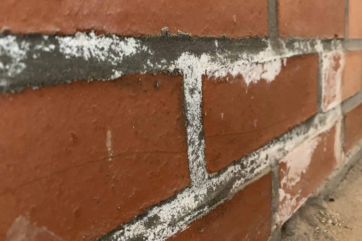 salpetre brique